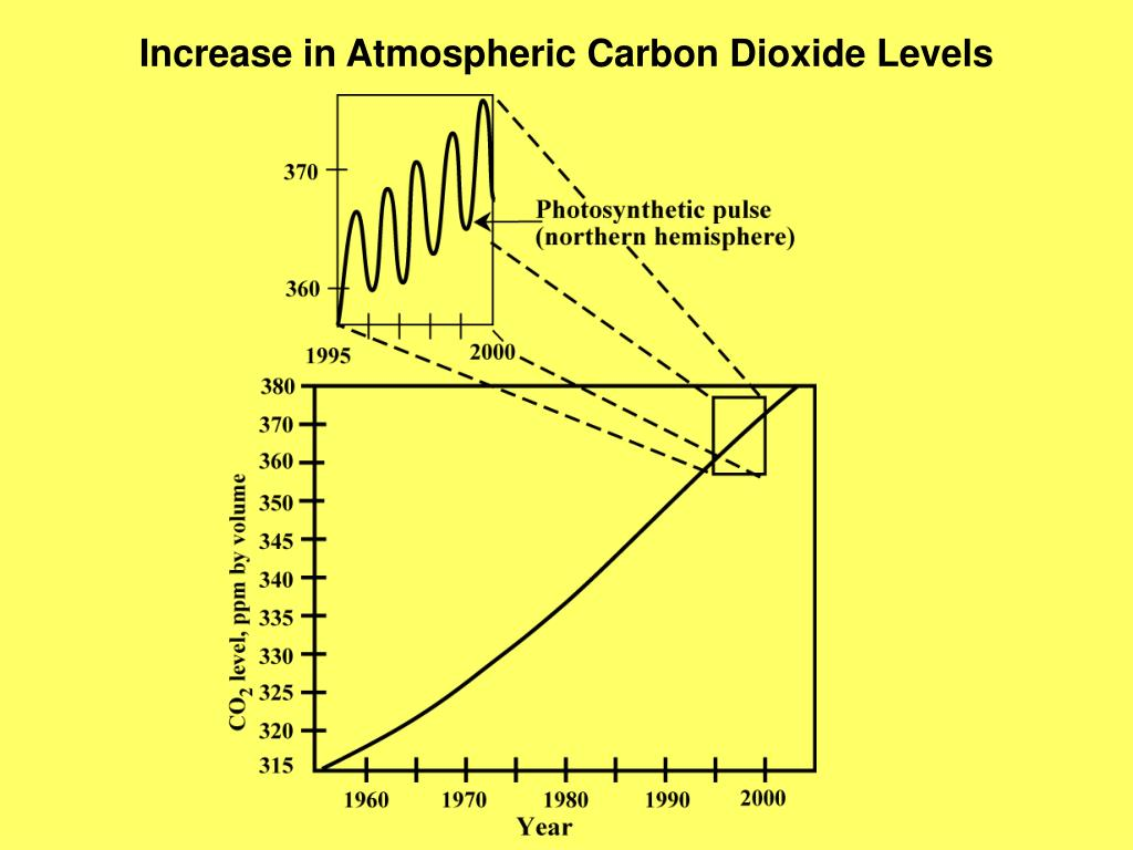 Increase in Atmospheric Carbon Dioxide Levels