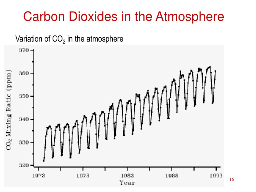 Carbon Dioxides in the Atmosphere