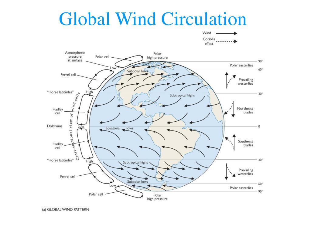 Global Wind Circulation