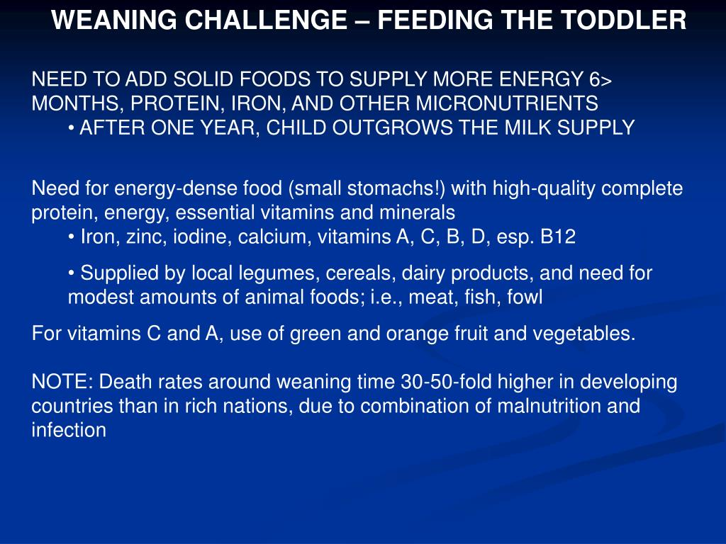 WEANING CHALLENGE – FEEDING THE TODDLER