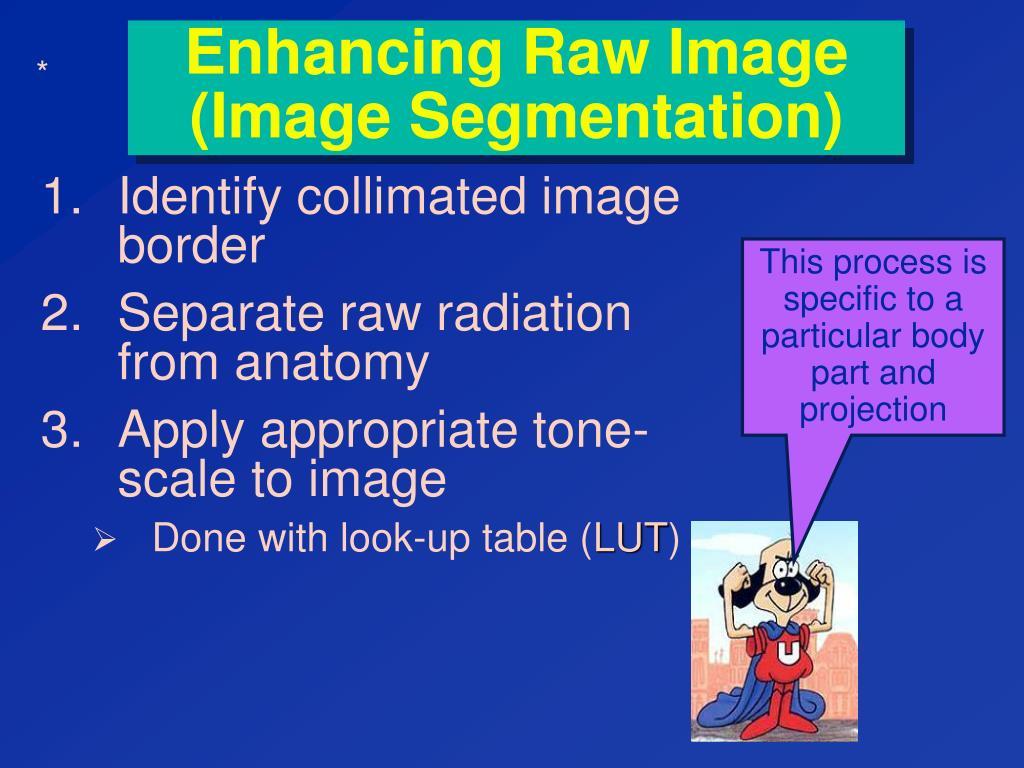 Enhancing Raw Image (Image Segmentation)