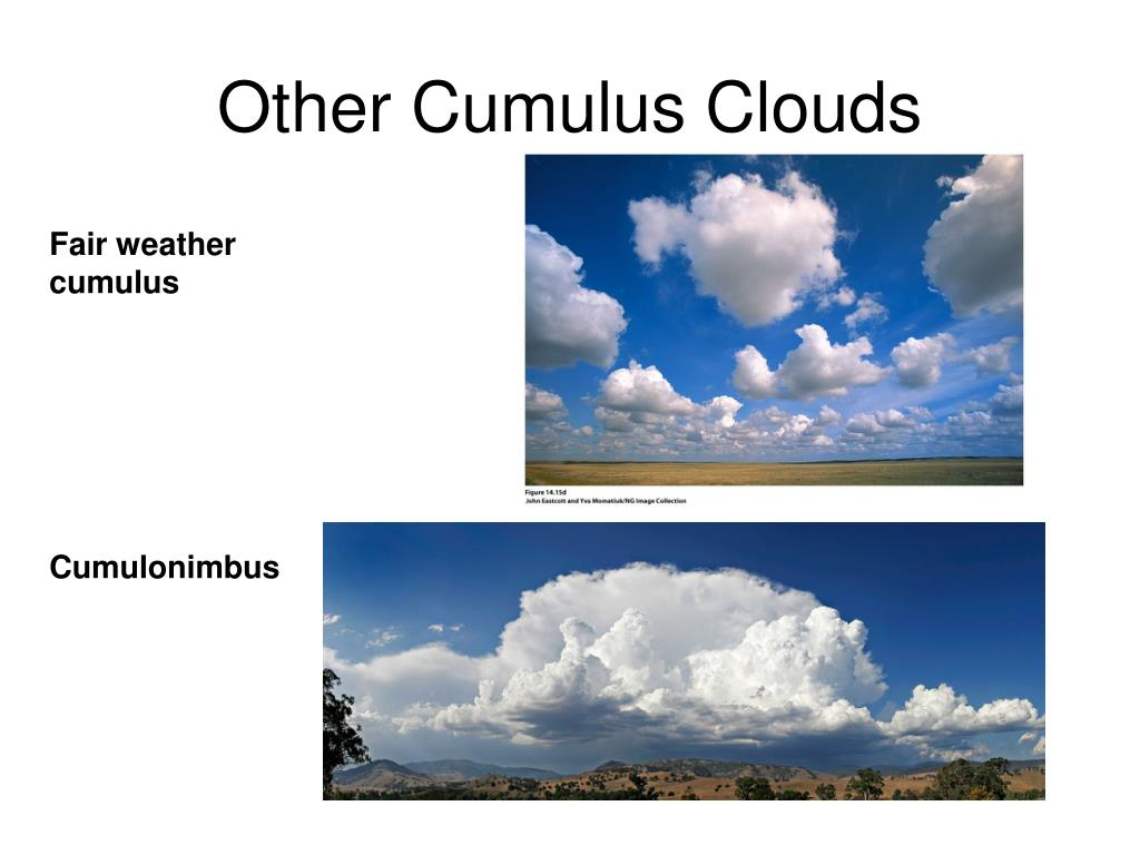 Other Cumulus Clouds