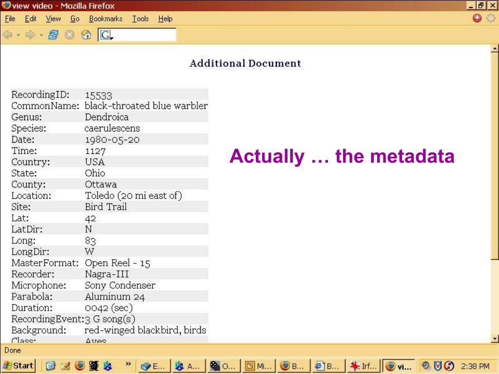 Actually … the metadata