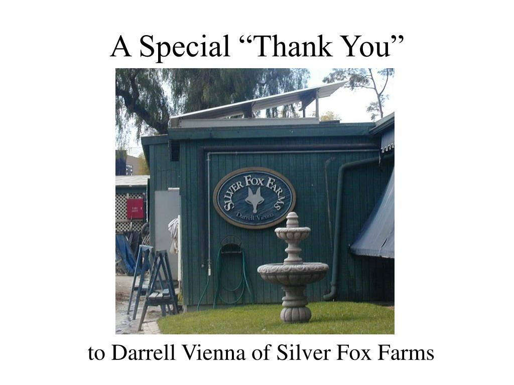 """A Special """"Thank You"""""""