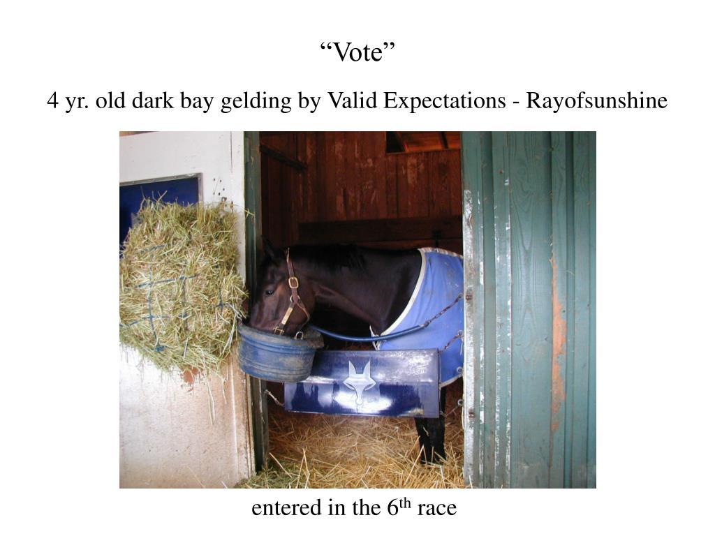 """Vote"""
