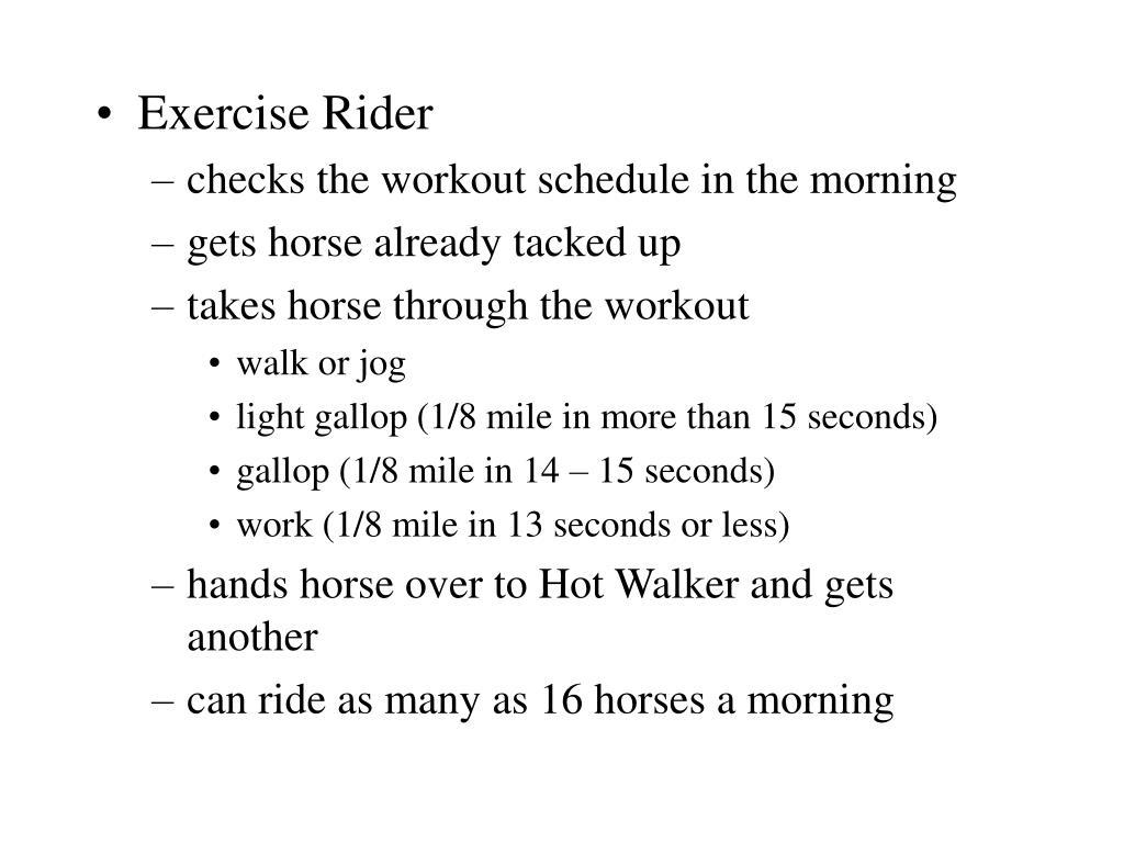 Exercise Rider