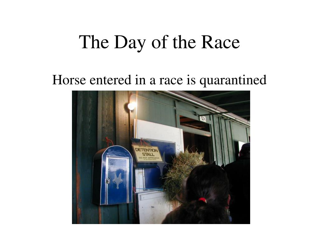 The Day of the Race
