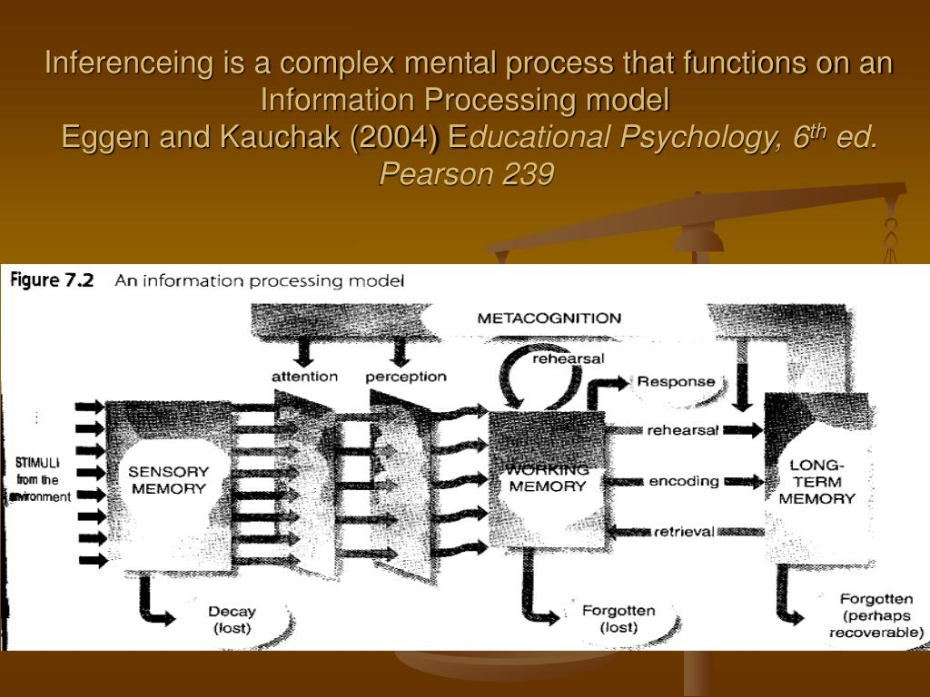 the functions of the information processing model The information consolidation theory of sleep is based on cognitive research and suggests that people sleep in order to process information that has been acquired during the day in addition to processing information from the day prior, this theory also argues that sleep allows the brain to prepare for the day to come.