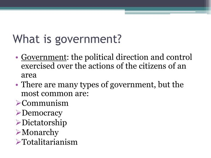 What is government