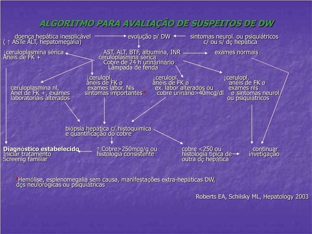 ALGORITMO PARA AVALIAÇÃO DE SUSPEITOS DE DW