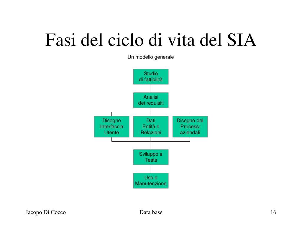 Fasi del ciclo di vita del SIA