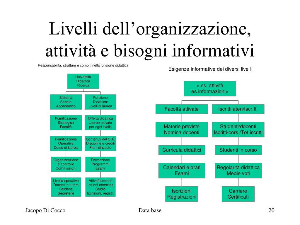 Livelli dell'organizzazione,