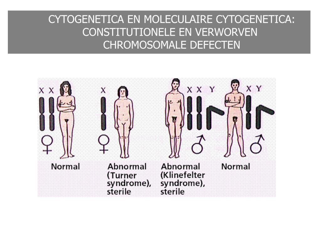 CYTOGENETICA EN MOLECULAIRE CYTOGENETICA: