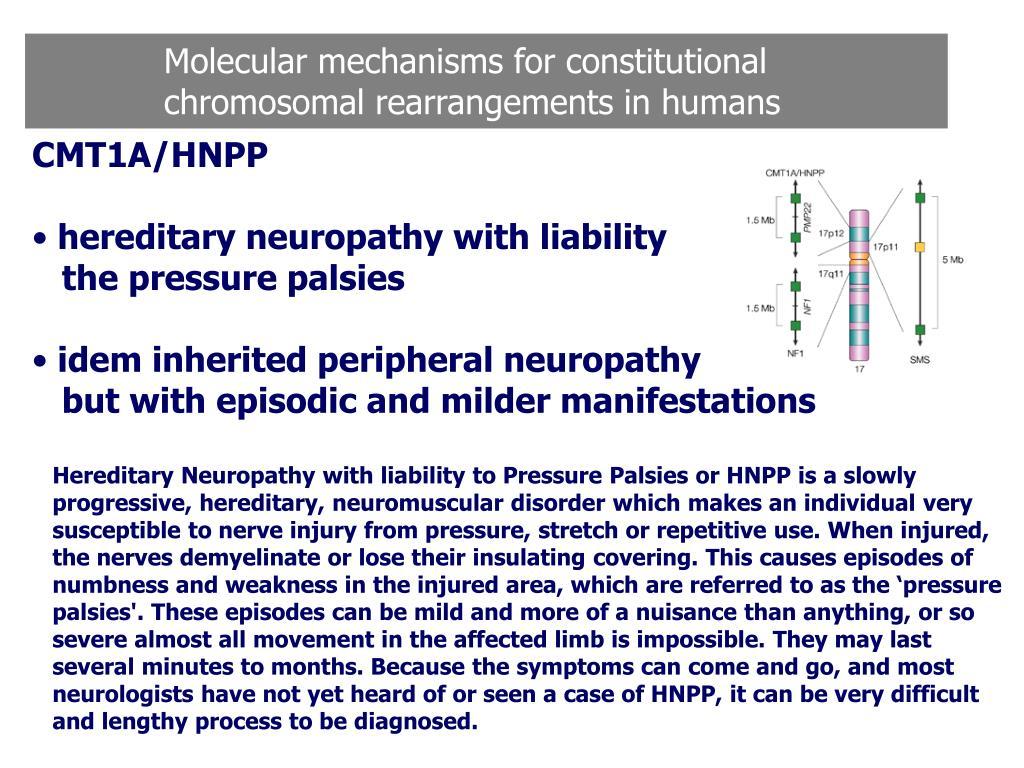 Molecular mechanisms for constitutional