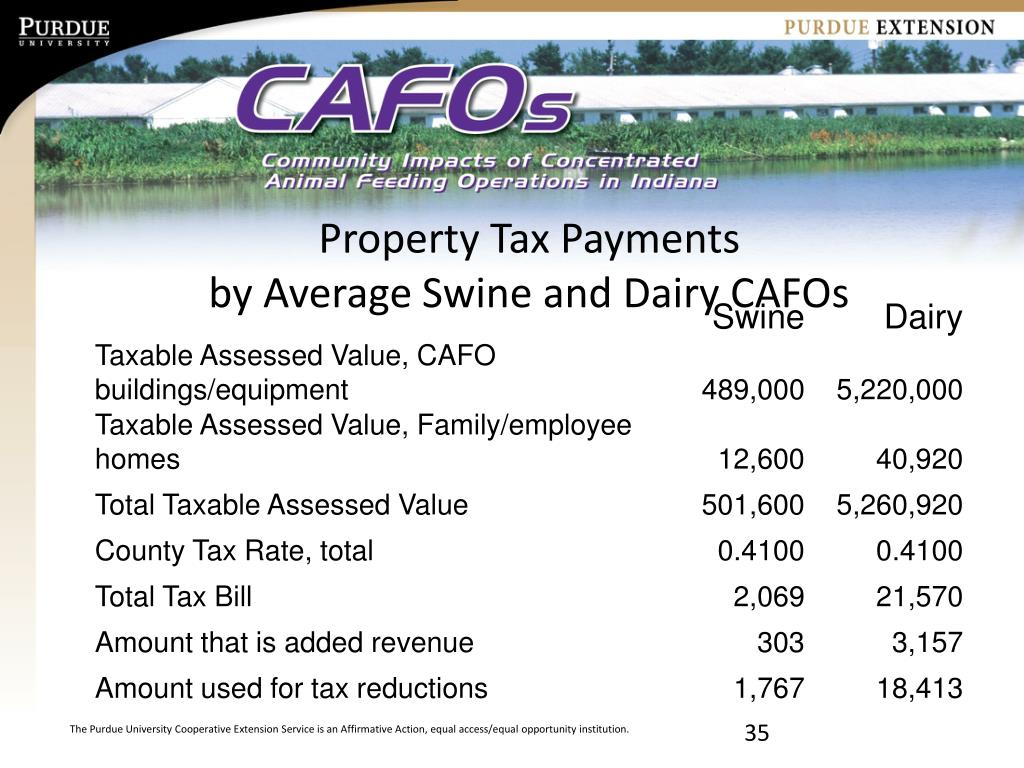 Property Tax Payments