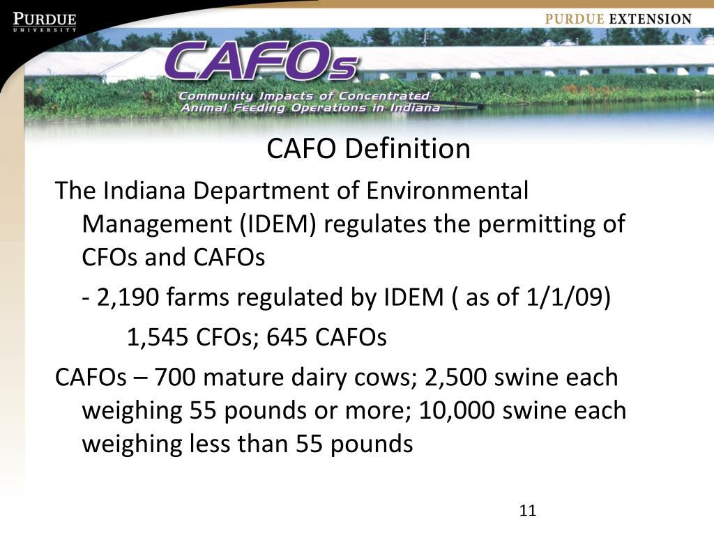 CAFO Definition