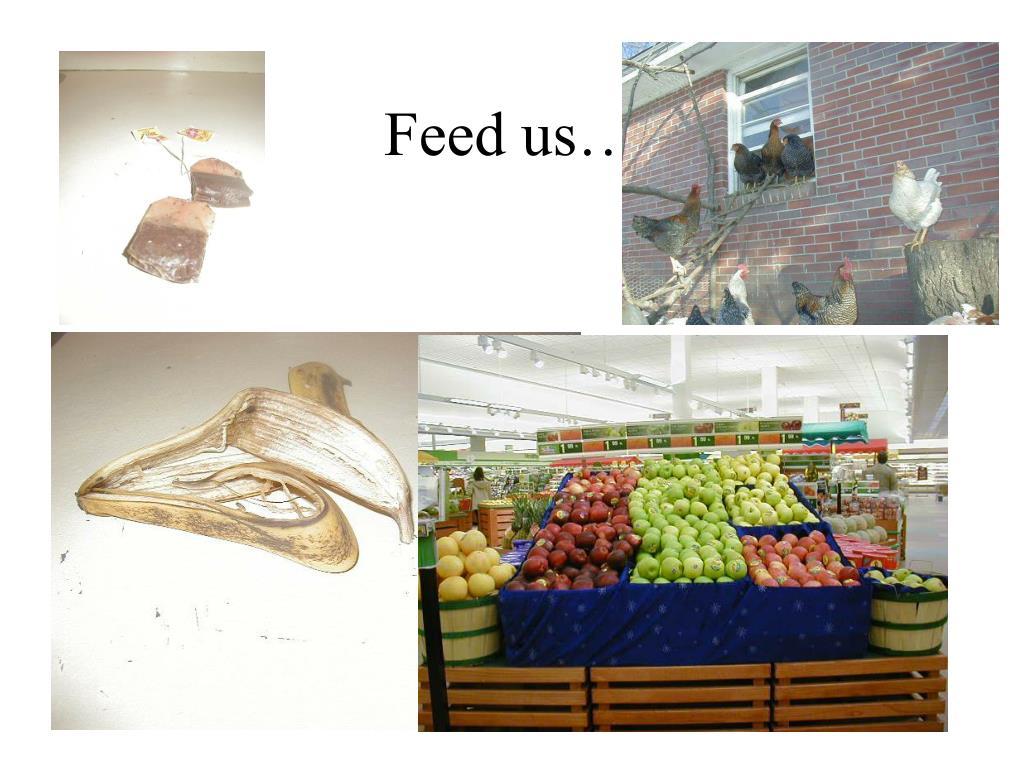 Feed us…