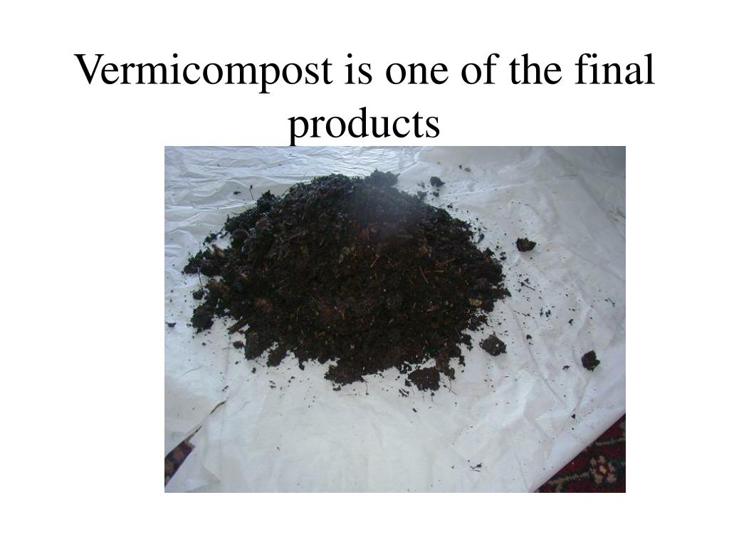 Vermicompost is one of the final products