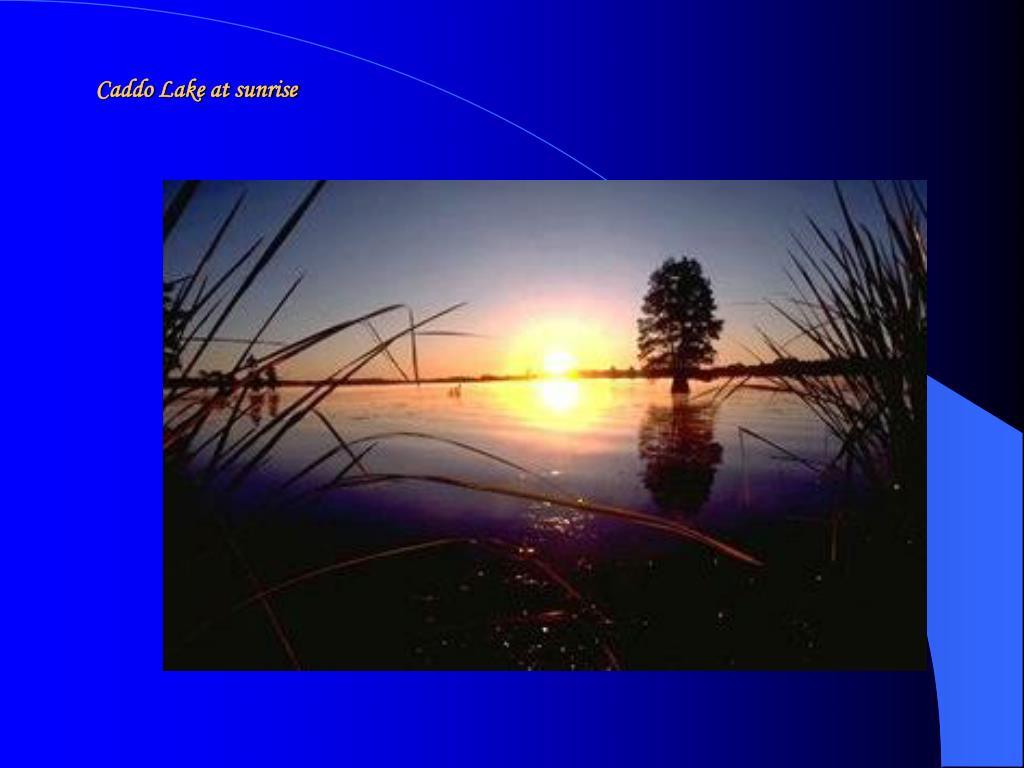 Caddo Lake at sunrise