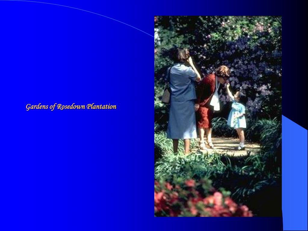 Gardens of Rosedown Plantation