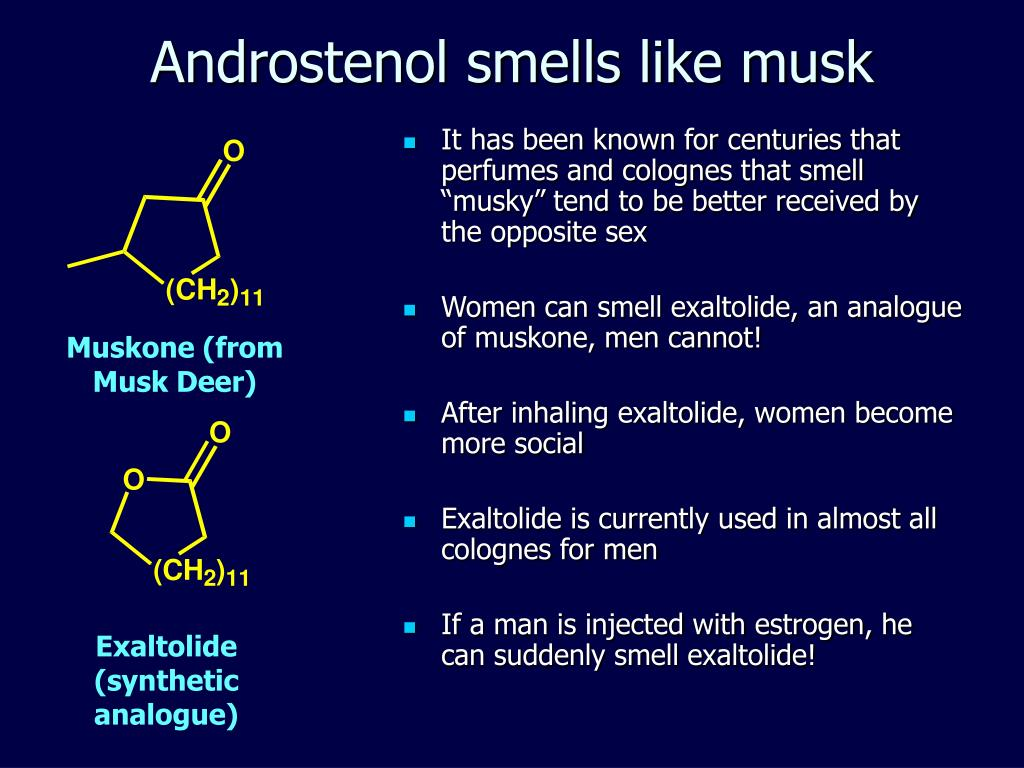 Androstenol smells like musk