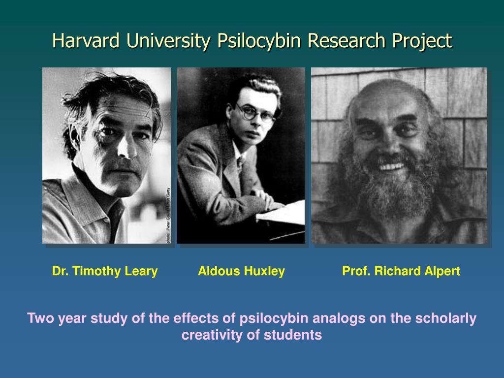 Harvard University Psilocybin Research Project