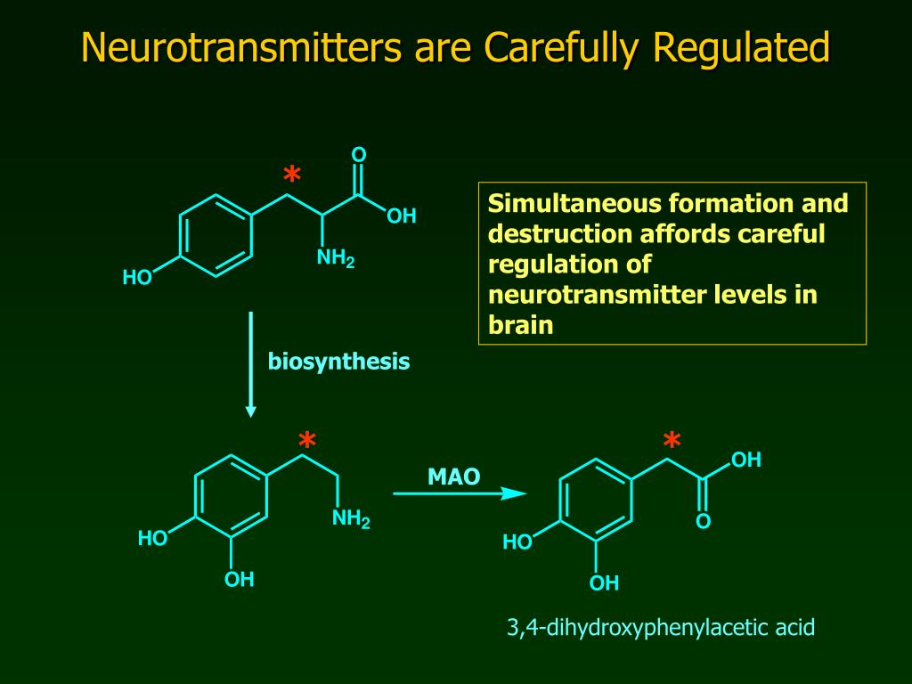 Neurotransmitters are Carefully Regulated