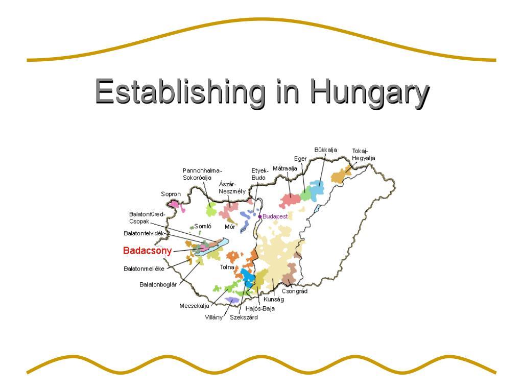 Establishing in Hungary