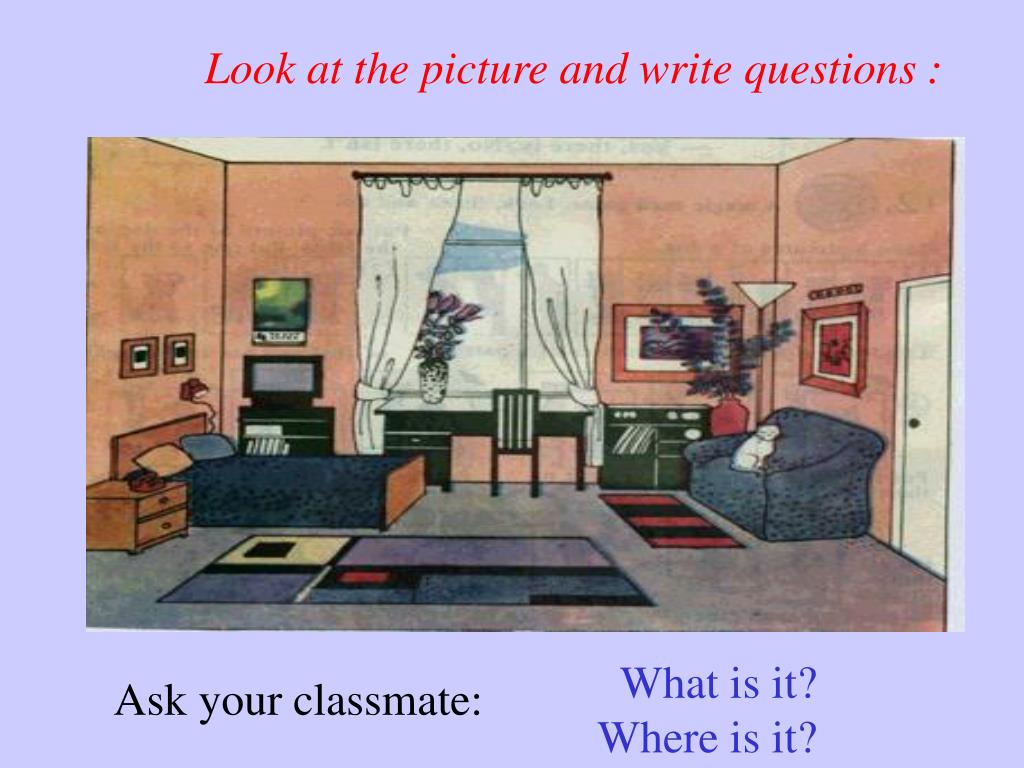 Look at the picture and write questions :