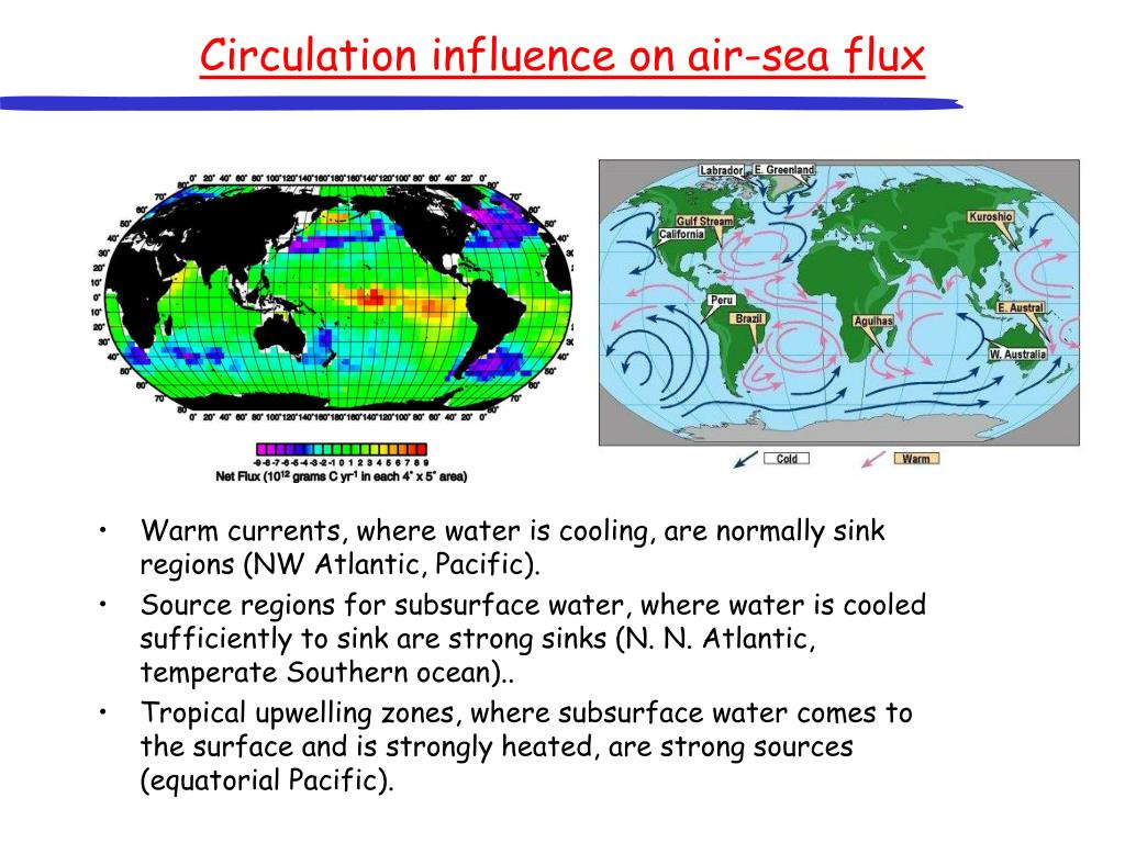 Circulation influence on air-sea flux
