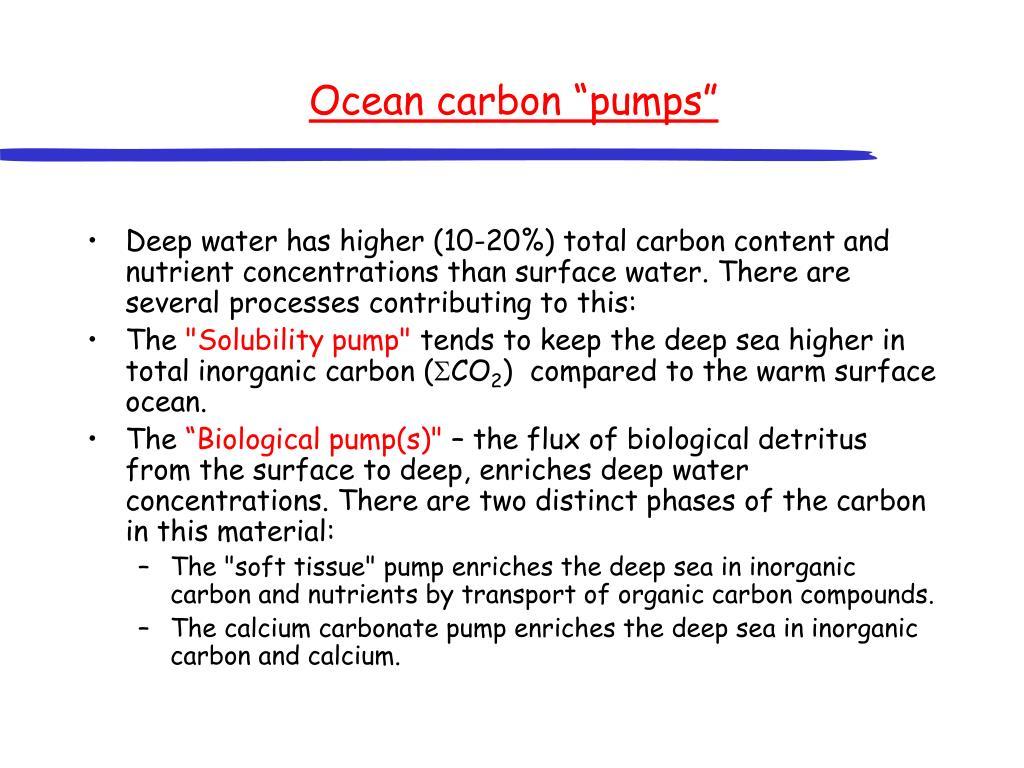 """Ocean carbon """"pumps"""""""