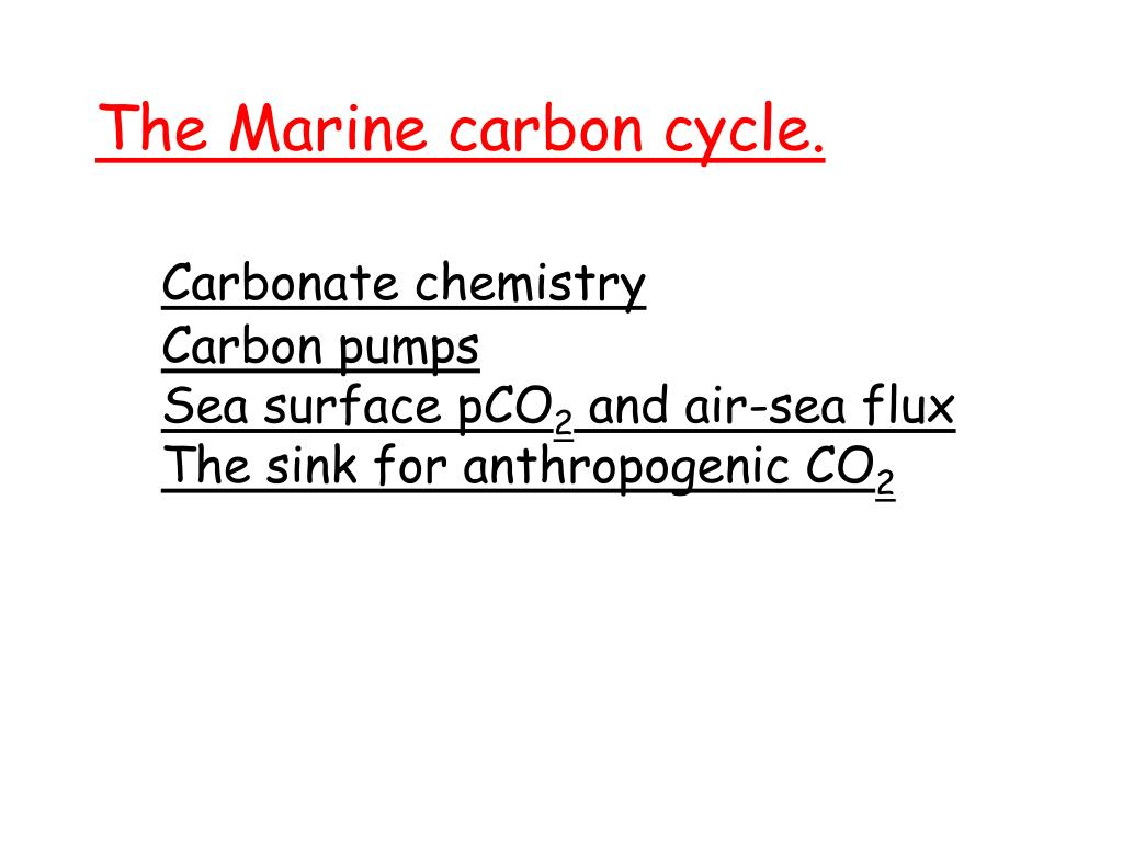 The Marine carbon cycle.