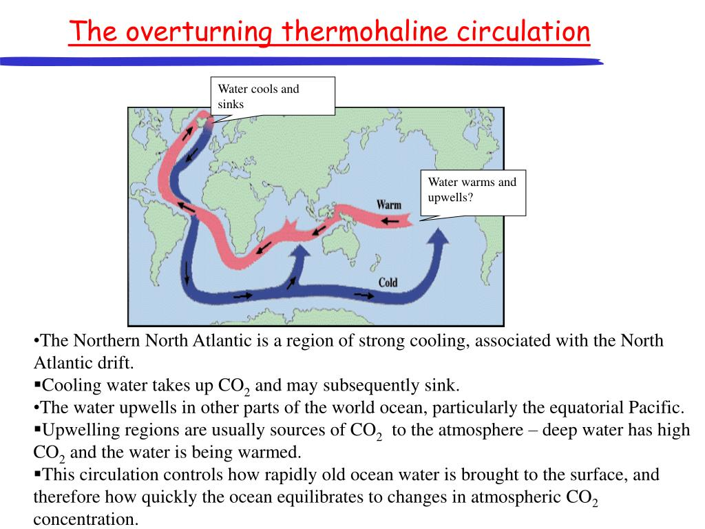 The overturning thermohaline circulation