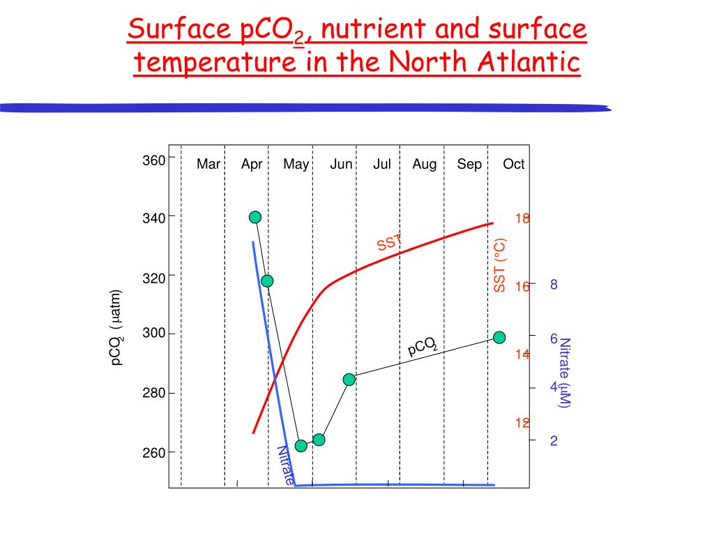 Surface pCO