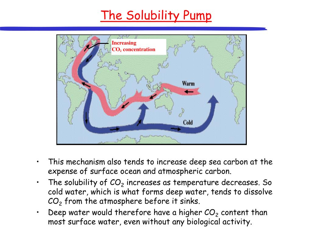 The Solubility Pump