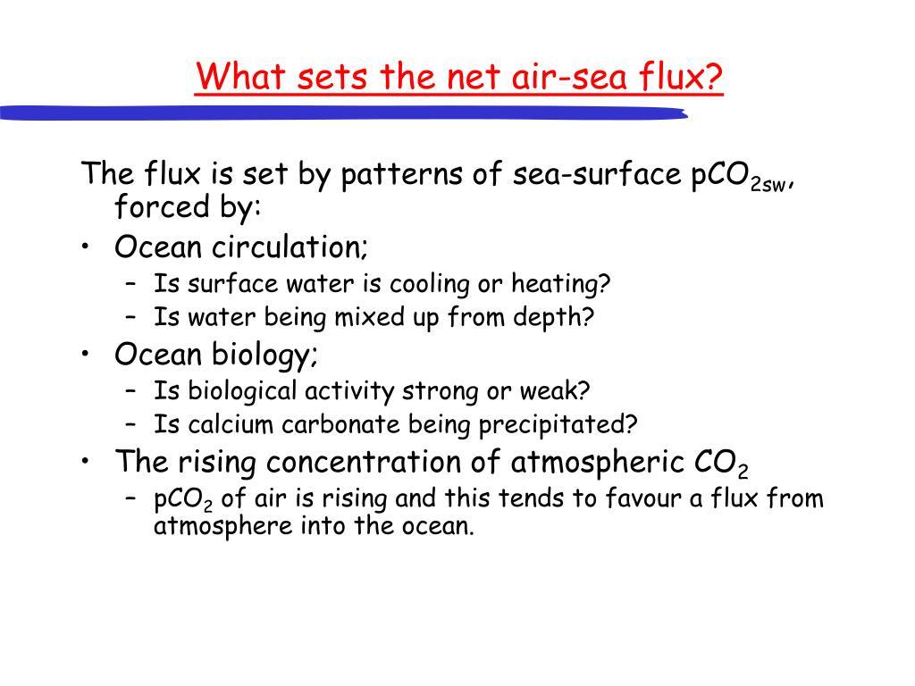What sets the net air-sea flux?