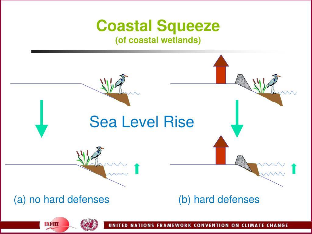 Coastal Squeeze