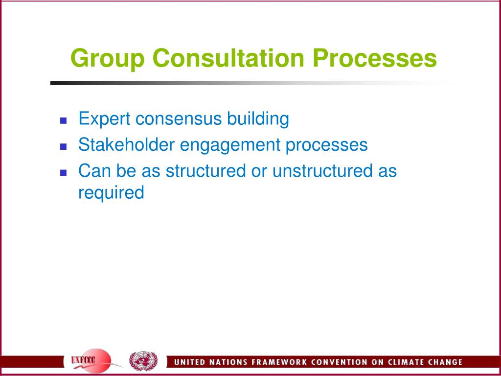 Group Consultation Processes