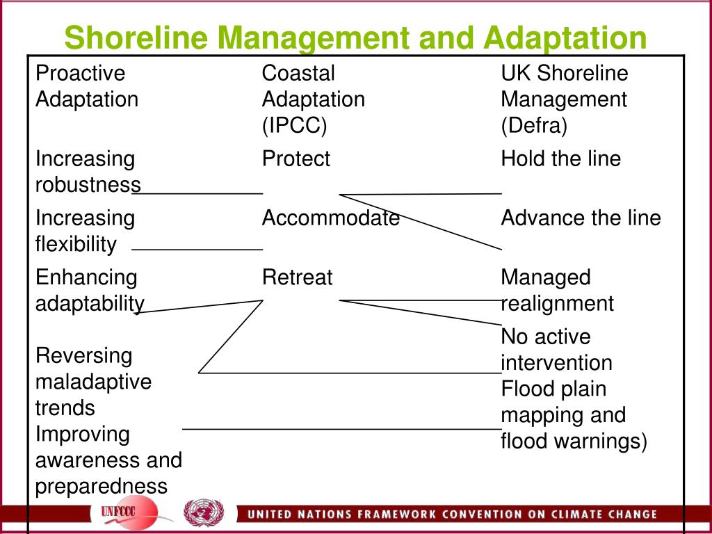 Shoreline Management and Adaptation