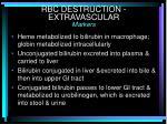 rbc destruction extravascular markers