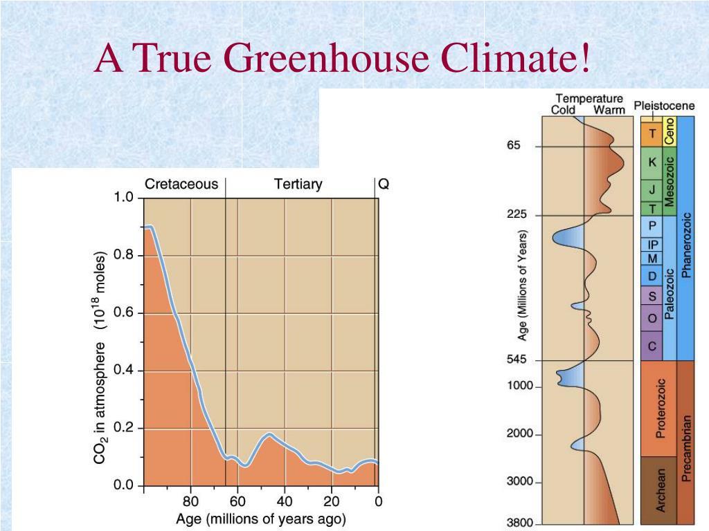 A True Greenhouse Climate!
