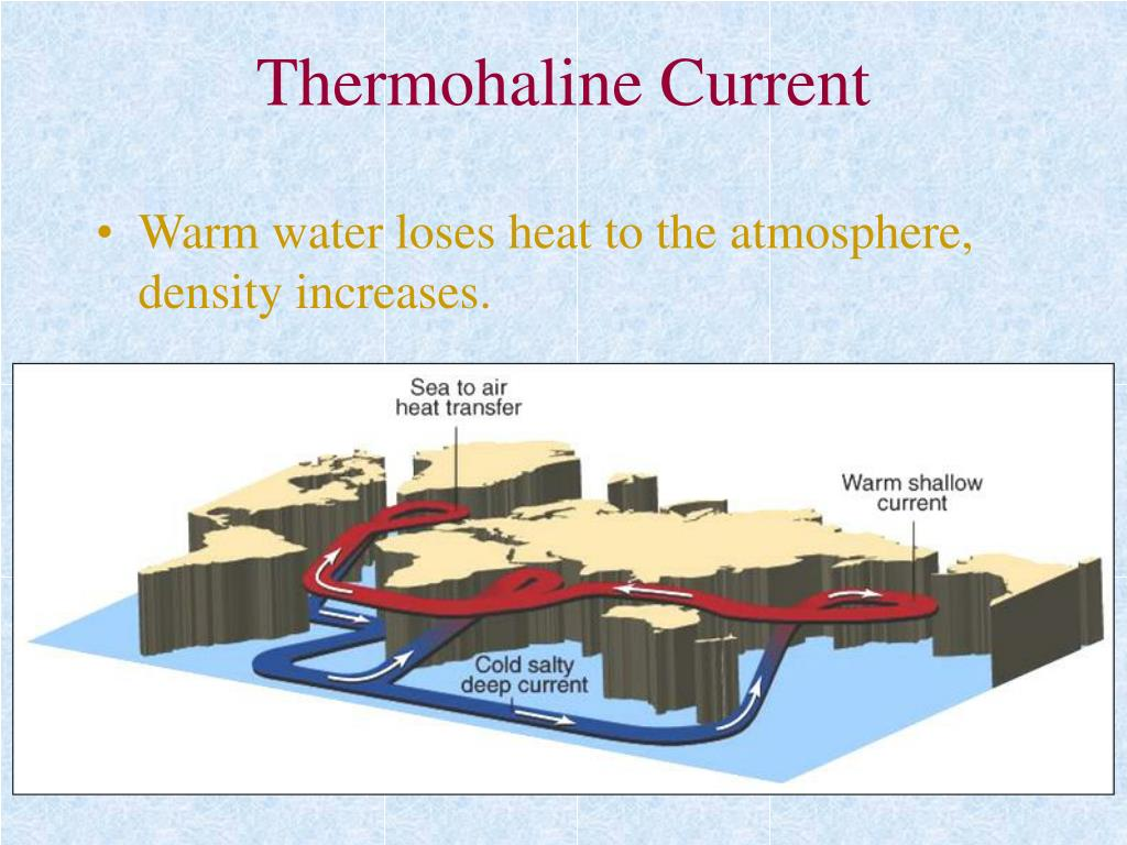 Thermohaline Current
