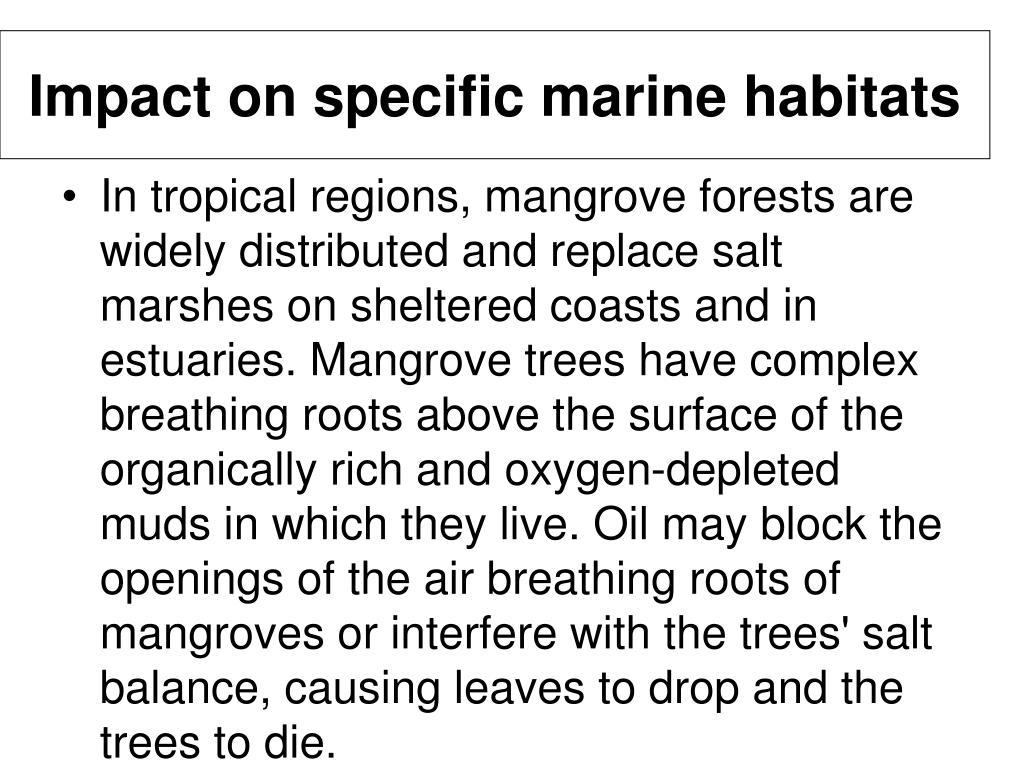 Impact on specific marine habitats