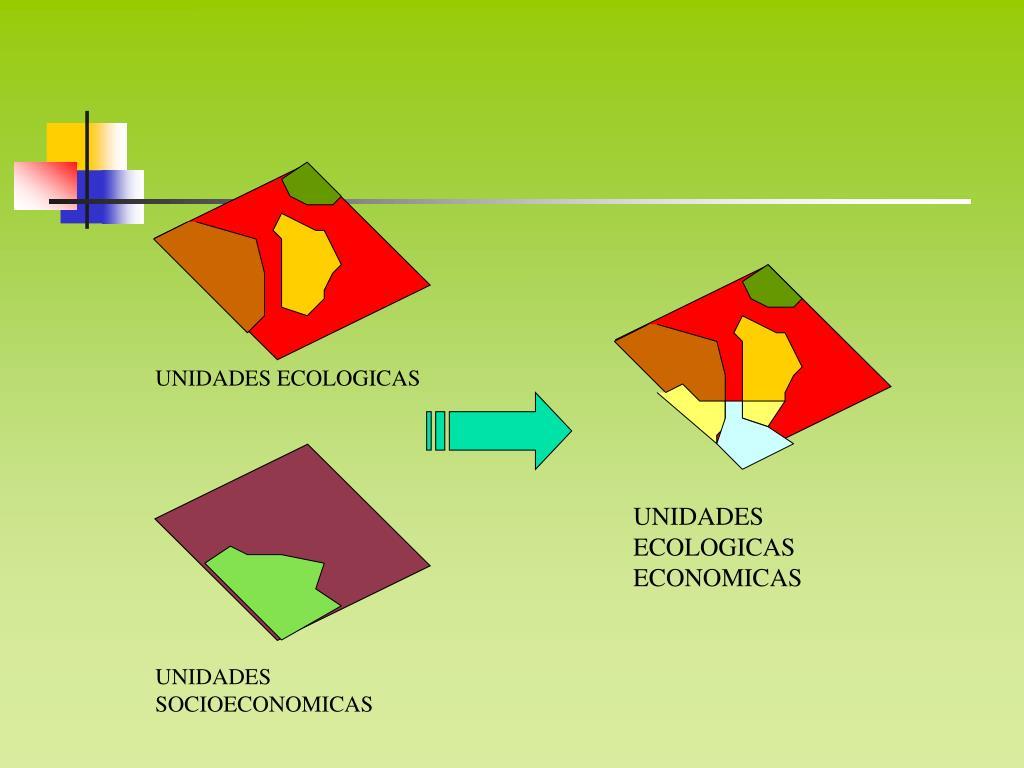 UNIDADES ECOLOGICAS