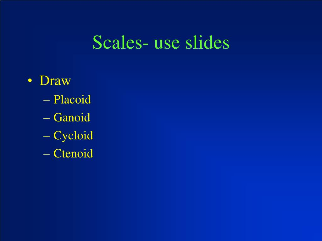 Scales- use slides