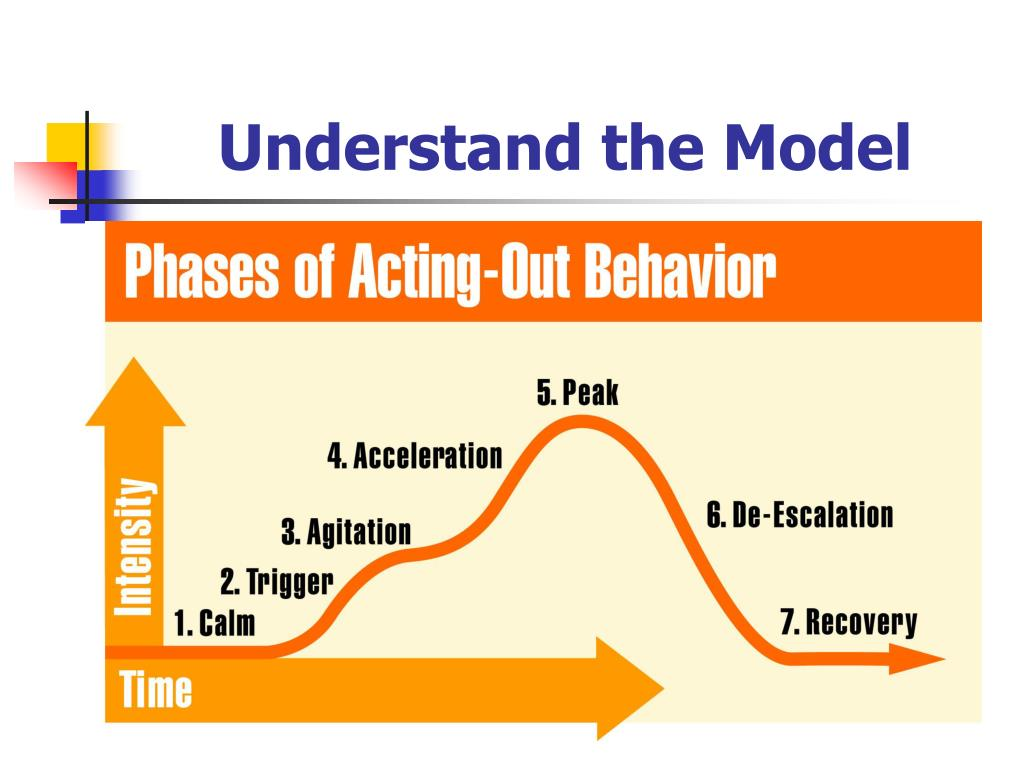 Understand the Model
