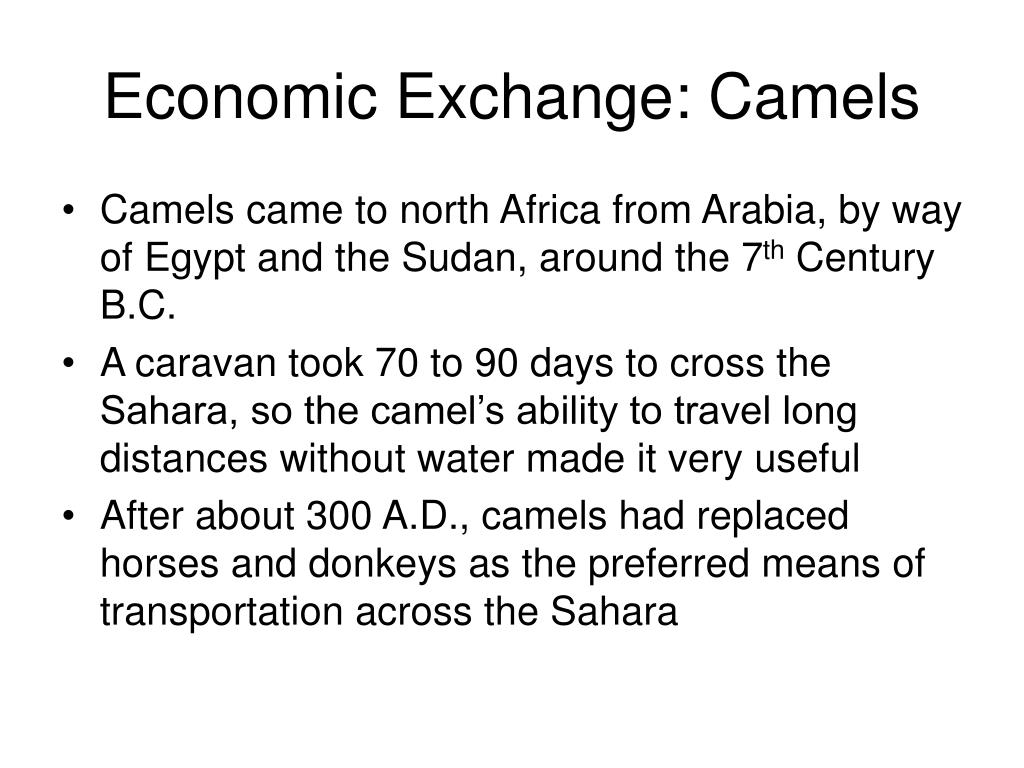 Economic Exchange: Camels
