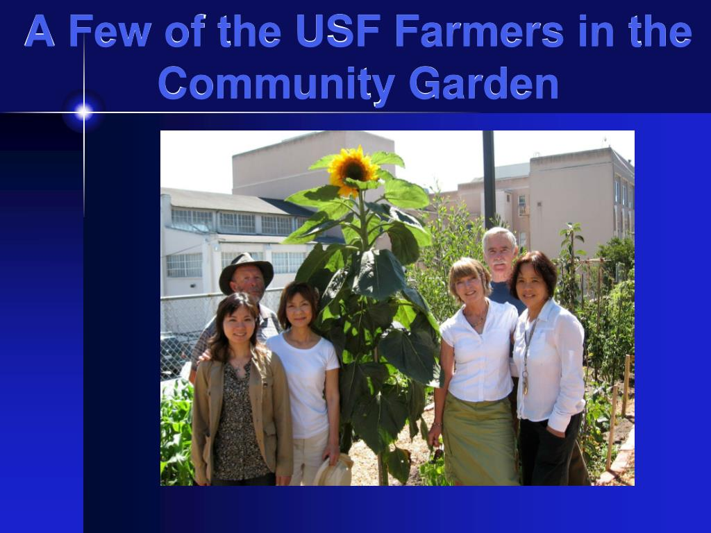A Few of the USF Farmers in the Community Garden