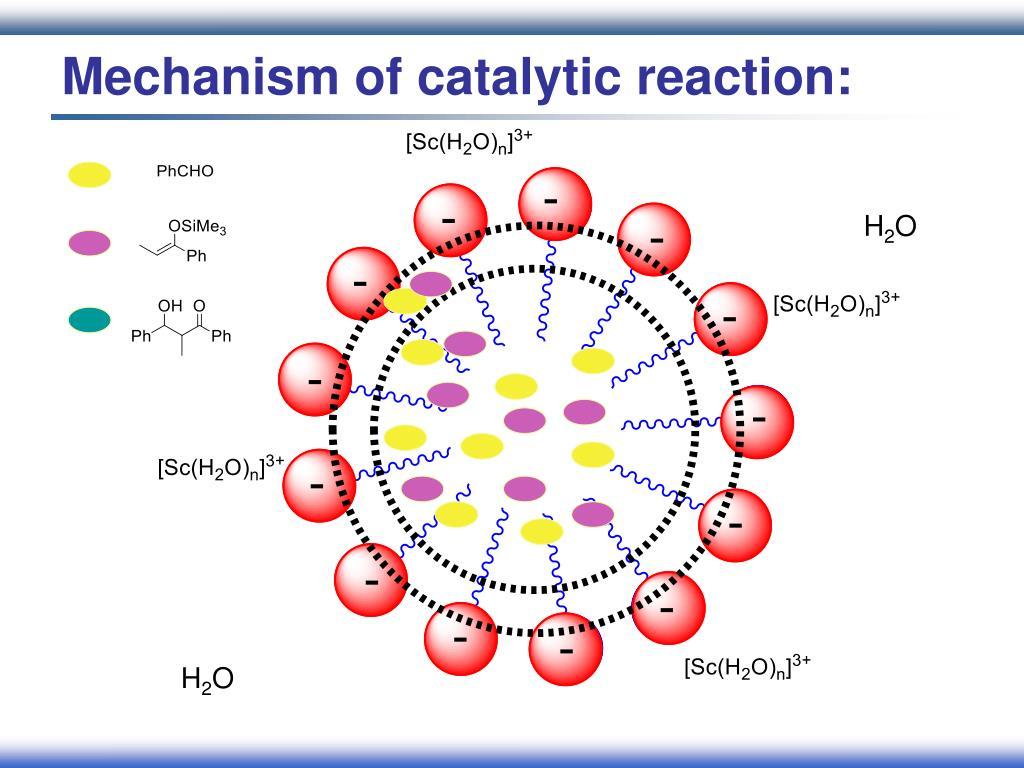 Mechanism of catalytic reaction: