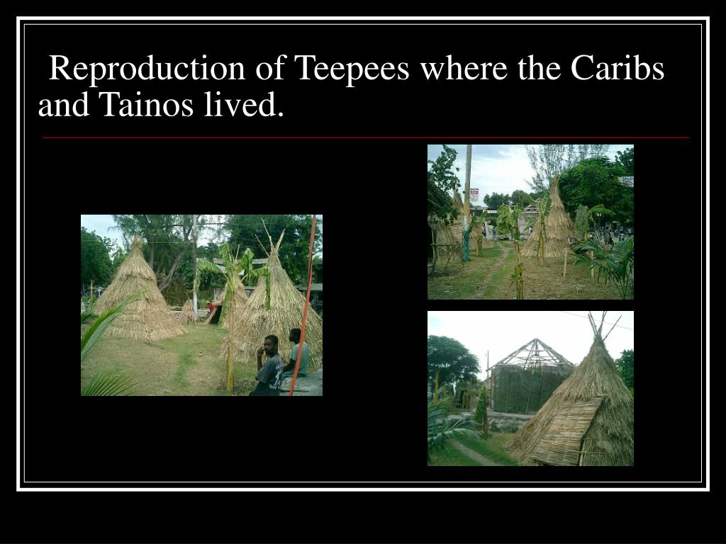 Reproduction of Teepees where the Caribs    and Tainos lived.